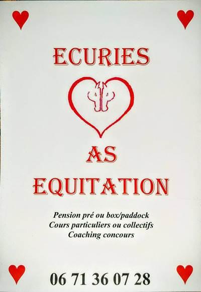 AS EQUITATION
